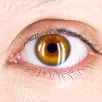 Jakie są objawy zwyrodnienia plamki i chorób siatkówki?
